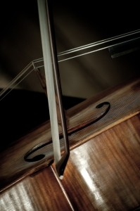 1339387_cello_detail